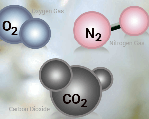 CO2-O2 Controllers