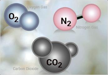 CO2-O2 Controllers